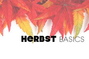Herbst-Basics 2016