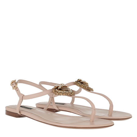 Dolce&Gabbana  Sandalen  -  Thong Sandal Cipria  - in rosa  -  Sandalen für Damen braun