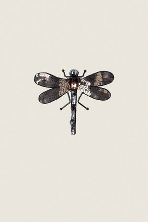 Dorothee Schumacher EMBROIDERED ELEGANCE dragonfly brooch small beige
